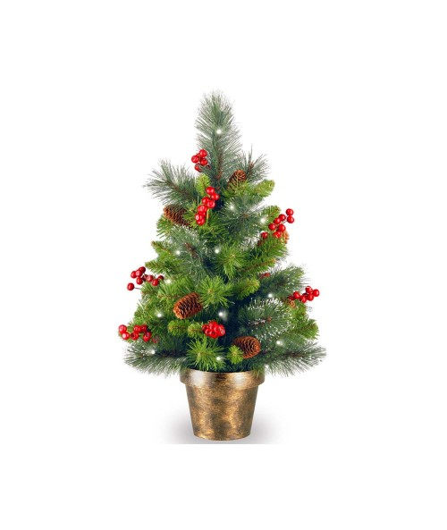 National Tree CW7-334-20 Crestwood Spruce Small Tree