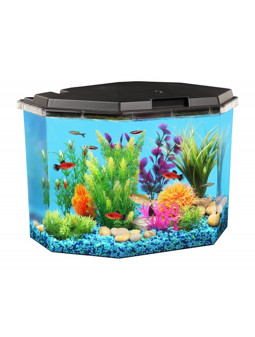 API Semi-Hex Aquarium Kit 6-1/2-Gallon